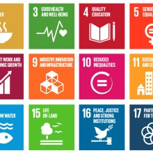 image 102715 un sdgs 220x220 - This unique tool evaluating partnership opportunities can help achieve the SDGs