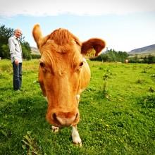 farmer 657341 1920 220x220 - Subsistence to Sustainability