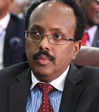 Mohamed Mohamed 194x220 - H.E. Mohamed Abdullahi Mohamed