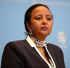 download 11 - Ambassador Dr. Amina Mohamed