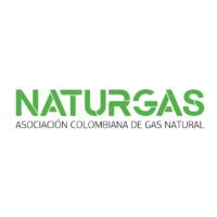 naturgas Mesa de trabajo 1 200x200 1 - Naturgas
